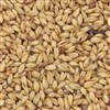 800205 - Briess Caramel Malt 10L - per oz.