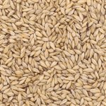 800170 - Briess Carapils Malt - per oz.