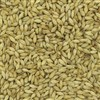 804126 - Briess Aromatic Malt - per lb.